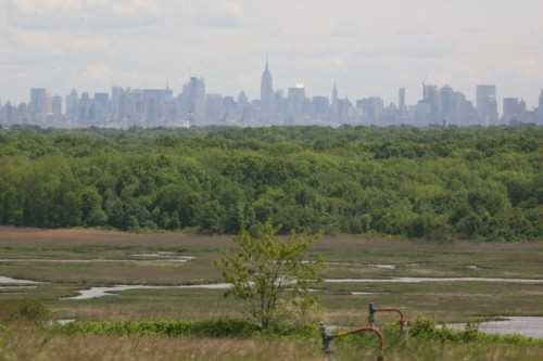 View from Fresh Kills South Hill. Photo by Emmanuel Fuentebella.